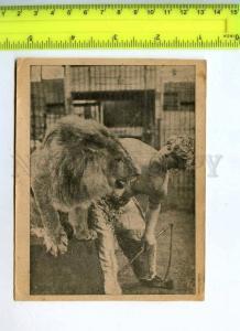 256033 RUSSIA Circus MOVIE Gladyshchikov Lion tamer Vintage PC