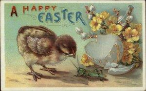 Easter - Cute Chick & Grasshopper c1910 Postcard