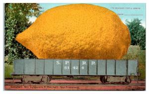 1910 I'm Sending You A Lemon, Southern Pacific Railroad Exaggerated Postcard