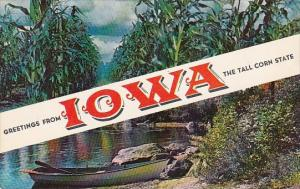 Greetings From Iowa The Tall Corn State 1958