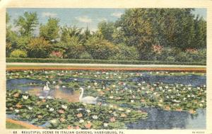 Swans in Italian Gardens - Harrisburg PA, Pennsylvania - pm 1941 - Linen