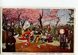 3037481 JAPAN TOKYO Musician in Asukayama cherry tree