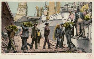 MOBILE , Alabama , 1901-1907 ; Unloading a Banana Steamer