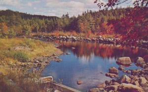 Salmon Fishing Bridge Musquodoboit River Nova Scotia Canada Postcard