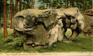 France - Fontainebleau. L'Elephant Roche
