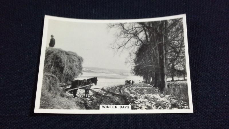 Senior Service Cigarette Card No 17 Our Countryside Winter Days