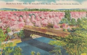 READING, PA, 30-40s; Stoudt Ferry Bridge Across the Schuylkill River, Snyder Fry