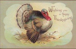 CLAPSADDLE , Thanksgiving turkey  , 00-10s