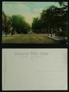 Allan Gardens and Sherborne Street Toronto c 1910
