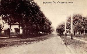 Creston Ohio~Burbank Street Scene~Houses~Outhouse(?)~c1910 DA Kretser Postcard