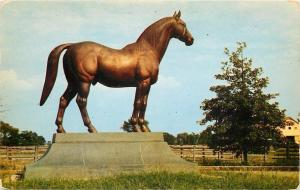 Lexington Kentucky~Man-O-War~The Wonder Horse on Faraway Farm 1950 Postcard