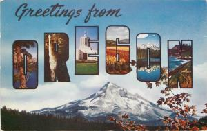 Oregon~Large Letter Chrome Greetings~1960s Postcard