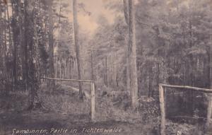 Gumbinnen Partie In Tichtenwalde Prussia Antique Postcard