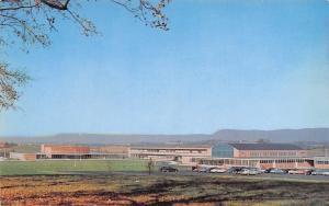 Carlisle Pennsylvania~Senior High School~West Penn & Orange Streets~1950s Cars