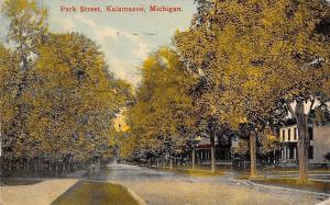 Kalamazoo Michigan~Park Street Homes~Shade Trees~1910 Postcard
