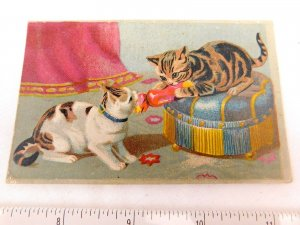 1870's-80's Cute Cats Fight Over Pillow Tower Hall Clothing House Scranton  F48