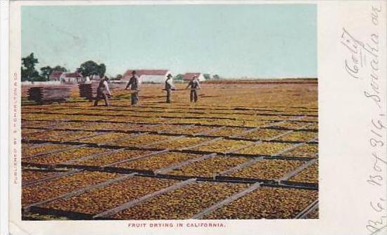 California Fruit Drying In California