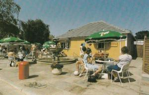 7 Seven Up Fizzy Drinks Umbrella Cafe Wicksteed Park Northampton 1970s Postcard