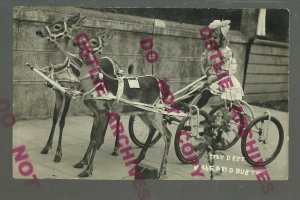 Astoria OREGON RPPC 1911 ADVERTISING Babe & Buster TRAINED DEER CART Cute Girl!