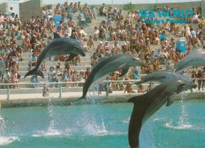 GOLD COAST , Queensland , Australia , 1980s ; SEAWORLD #3