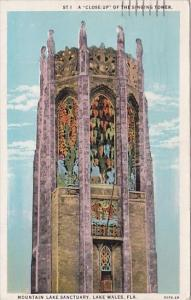 Florida Lake Wales A Close Up Of The Singing Tower Mountain Lake Sanctuary  1935