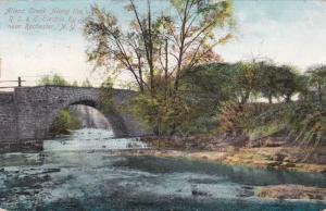 Allens Creek along RS&E Electric Railway - Rochester, New York - pm 1909 - DB