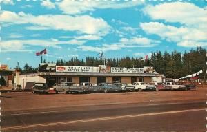 Kakabeka Falls Ontario~The Pines Coffee Shop~Variety Store~1960s Cars~Postcard