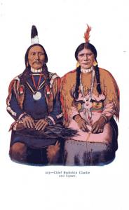 #203 Chief Buckskin Charlie and Squaw, Undivided Back, pre-1907