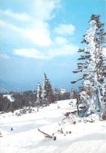 Snow - Schneeberg