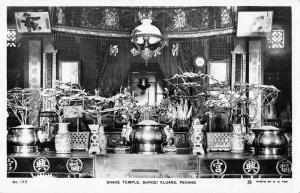 Penang Malaysia Snake Temple Real Photo Antique Postcard J40518