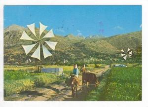 Windmill on Plateau of Lassithi, Greece 1950-70s