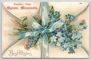 Greetings from Ogilvie Minnesota~Blue Forget-Me-Nots on Envelope~1907 Postcard