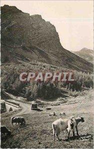 Postcard Modern Approx Barcelonnette Route du Col de la Cayolle