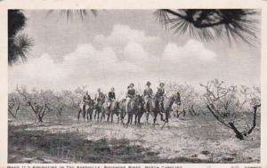North Carolina Southern Pines Horseback Riders In Springtime In The Sandhills...