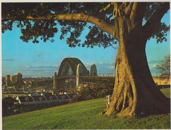 Harbour Bridge From Observatory Hill Dawes Point Sydney Australia Postcard