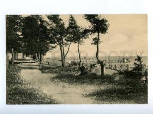 167402 RUSSIA Zelenogorsk TERIJOKI pine beach Vintage postcard