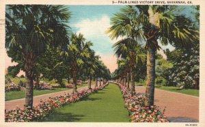 Savannah, Georgia, GA, Palm-Lined Victory Drive, 1950 Linen Postcard h3517
