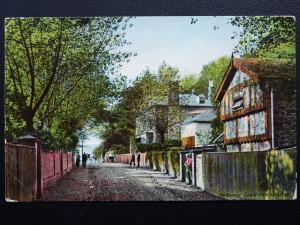 Kent FOLKESTONE The Avenue, Radnor Cliff, Lower Sandgate Road c1906 Postcard