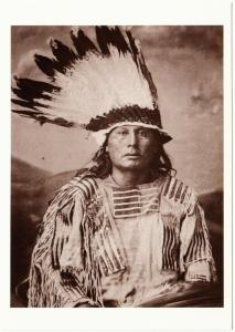 Gall Hunkpapa Lakota Sioux Chief Native American Modern Postcard