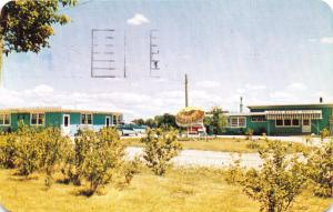 WINNIPEG MANITOBA CANADA GREEN ACRES MOTEL~1800 PEMBINA HIGHWAY POSTCARD 1959
