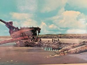 Postcard  The Peter Iredale  Wreck on the Coast of Oregon in 1906  4 x 6     U