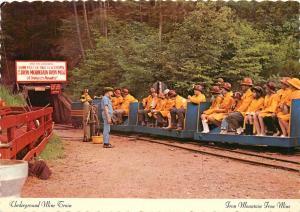 Iron Mountain Iron Mine Michigan Underground Tours Postcard