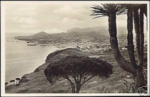 portugal, MADEIRA FUNCHAL, Panorama (ca. 1930) RPPC