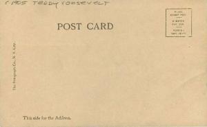 C-1905 Teddy Roosevelt Family Rotograph #B2 RPPC Photo Postcard 2086