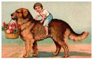 Dog , Boy riding large dog , carrying basket Flowers