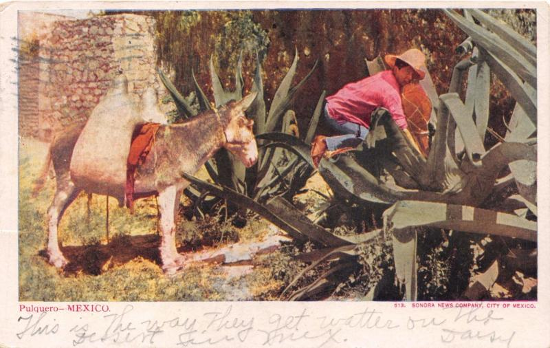 MEXICO PULQUERO~ALCOHOLIC DRINK FROM SAP OF SOME AGAVE PLANTS POSTCARD 1906 PSMK