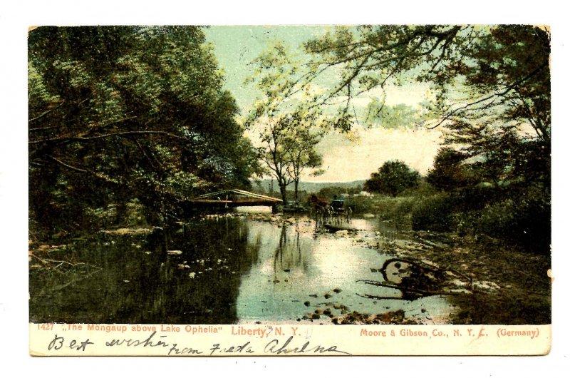 NY - Catskills, Liberty. The Mongaup above Lake Ophelia