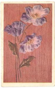 Post Card 1908 Texas
