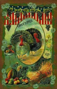 Thanksgiving Greeting Turkeys, Fruits Grapes Postcard