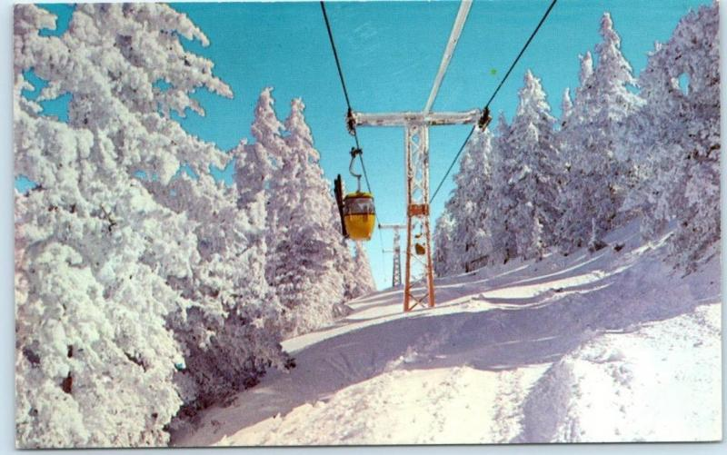 SIERRA BLANCA SKI RESORT (Now Ski Apache) NM New Mexico  GONDOLA LIFT   Postcard